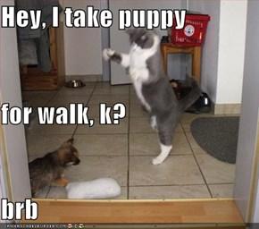 Hey, I take puppy for walk, k? brb