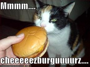 Mmmm....  cheeeeezburguuuurz....