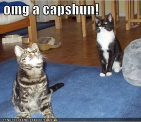 omg a capshun!