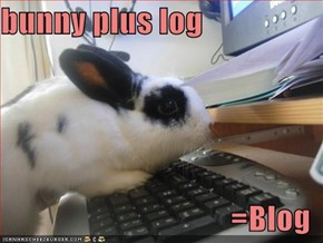 bunny plus log   =Blog