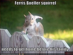 Ferris Bueller squirrel  needs to get home before his family