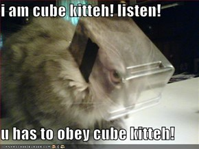i am cube kitteh! listen!   u has to obey cube kitteh!