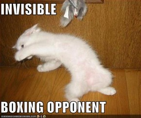 INVISIBLE  BOXING OPPONENT