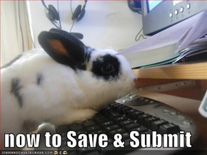 now to Save & Submit