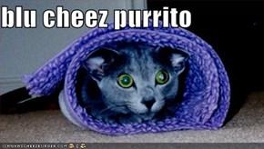 blu cheez purrito