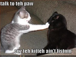 talk to teh paw  cuz teh kitteh ain't listnin'