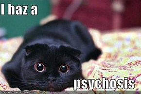 I haz a   psychosis