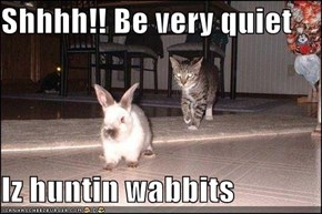 Shhhh!! Be very quiet  Iz huntin wabbits