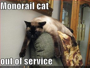 Monorail cat  out of service