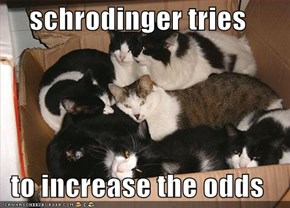 schrodinger tries  to increase the odds