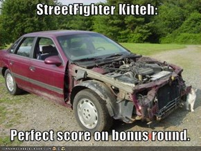 StreetFighter Kitteh:     Perfect score on bonus round.