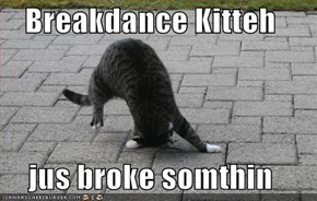 Breakdance Kitteh  jus broke somthin
