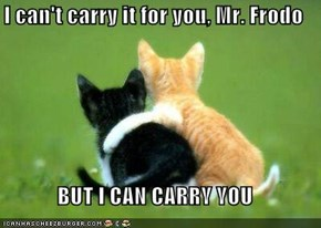I can't carry it for you, Mr. Frodo  BUT I CAN CARRY YOU