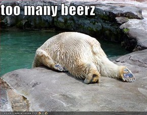 too many beerz