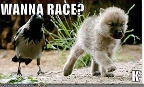 WANNA RACE?  K