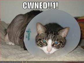 CWNED!!1!