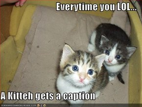 Everytime you LOL...  A Kitteh gets a caption