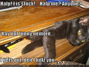 Halp! I is stuck!... Halp me? Anyone? 'Kay not funny nemore...  I gets out, den I killz you...