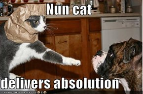 Nun cat  delivers absolution