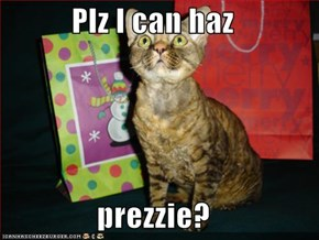 Plz I can haz  prezzie?