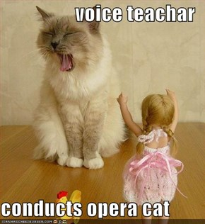 voice teachar  conducts opera cat