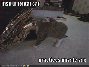 instrumental cat  practices unsafe sax