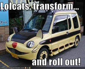 Lolcats, transform...  and roll out!