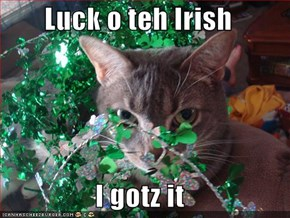 Luck o teh Irish  I gotz it