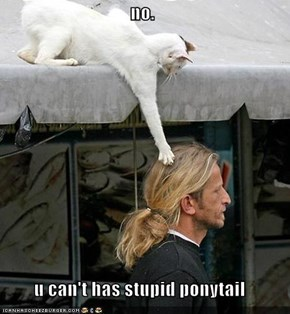 no.  u can't has stupid ponytail