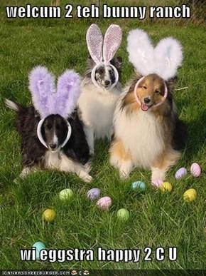 welcum 2 teh bunny ranch  wi eggstra happy 2 C U
