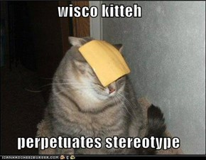 wisco kitteh  perpetuates stereotype