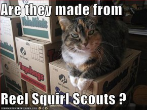 Are they made from  Reel Squirl Scouts ?