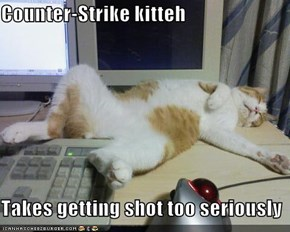 Counter-Strike kitteh  Takes getting shot too seriously