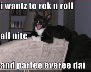 i wantz to rok n roll  all nite and partee everee dai