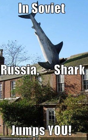 In Soviet Russia,      Shark Jumps YOU!