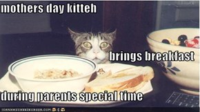 mothers day kitteh brings breakfast during parents special time