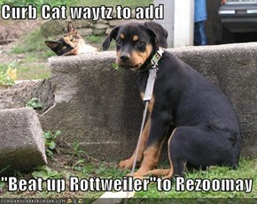 "Curb Cat waytz to add  ""Beat up Rottweiler""to Rezoomay"