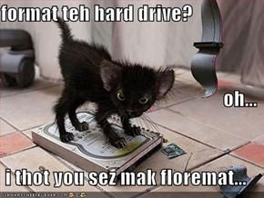 format teh hard drive? oh... i thot you sez mak floremat...