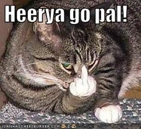 Heerya go pal!