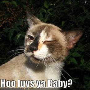 Hoo luvs ya Baby?