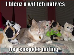 I blenz n wit teh natives  Dey suspeks nuting...