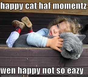 happy cat haf momentz  wen happy not so eazy