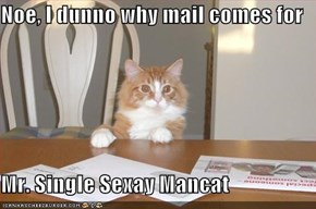 Noe, I dunno why mail comes for  Mr. Single Sexay Mancat