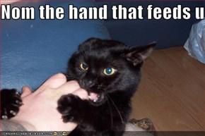 Nom the hand that feeds u