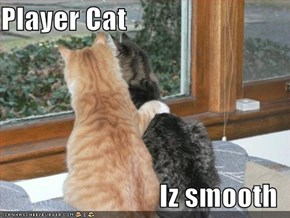 Player Cat  Iz smooth