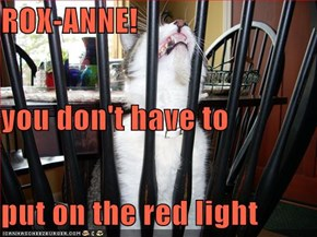 ROX-ANNE!          you don't have to put on the red light