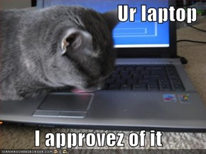 Ur laptop  I approvez of it