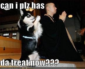 can i plz has   da treat now???