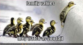 family values  they watch as you fail