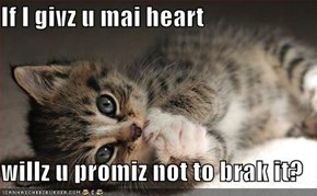 If I givz u mai heart  willz u promiz not to brak it?